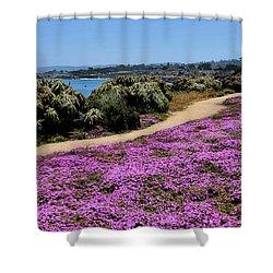 Purple Carpet Shower Curtain by Gina Savage