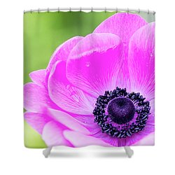 Shower Curtain featuring the photograph Purple Center by Rebecca Cozart