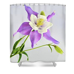 Purple Columbine Shower Curtain