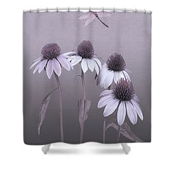 Purple Coneflowers And Dragonfly Shower Curtain
