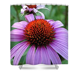 Shower Curtain featuring the photograph Purple Coneflowers by Rebecca Overton