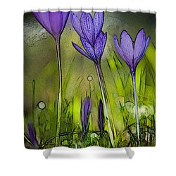 Shower Curtain featuring the photograph Purple Crocus Flowers by Jean Bernard Roussilhe