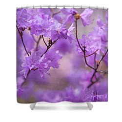 Shower Curtain featuring the photograph Purple Delight. Spring Watercolors by Jenny Rainbow