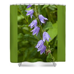 Purple Dew Drops Shower Curtain