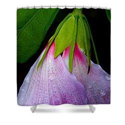 Purple Dew Shower Curtain