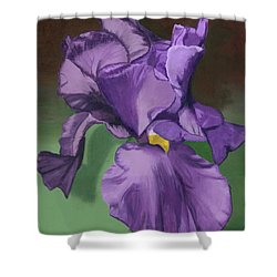 Purple Fantasy Shower Curtain