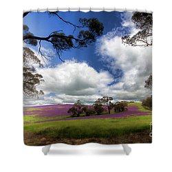 Purple Fields Shower Curtain by Douglas Barnard