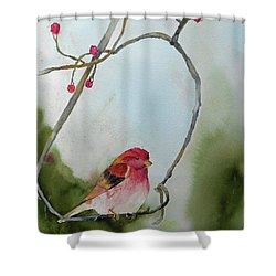 Purple Finch Shower Curtain by Christine Lathrop