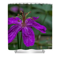 Purple Flower 5 Shower Curtain