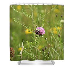 Purple Flower And Bee Shower Curtain