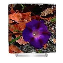 Purple Flower Autumn Leaves Shower Curtain