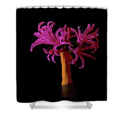 Purple Flower In A Pencil Vase  Shower Curtain by Mark Blauhoefer