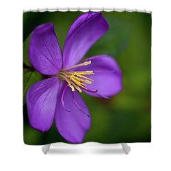 Purple Flower Macro Shower Curtain