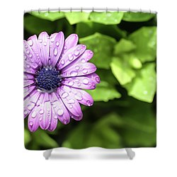 Purple Flower On Green Shower Curtain