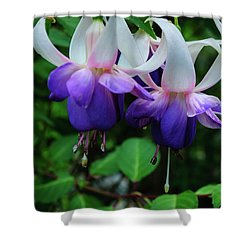Shower Curtain featuring the photograph Purple Fuschia by Tikvah's Hope