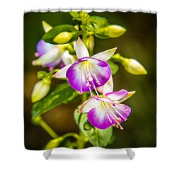 Purple Glow Shower Curtain by Jerry Cahill