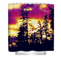 Shower Curtain featuring the photograph Purple Haze Forest by Nick Gustafson