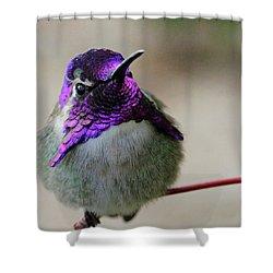 Purple Head Shower Curtain