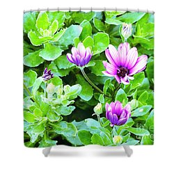 Purple In Greenery Shower Curtain