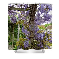 Purple In Priory Park Shower Curtain