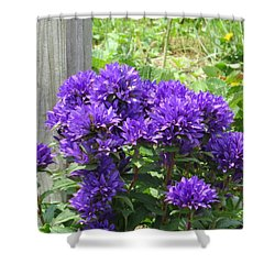 Purple In The Forest Shower Curtain by Jeanette Oberholtzer