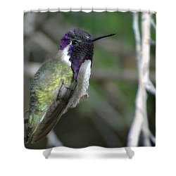 Shower Curtain featuring the photograph Purple Iridescence 2 by Fraida Gutovich