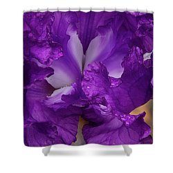 Shower Curtain featuring the photograph Purple Iris Close Up by Jean Noren