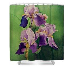 Purple Iris' Shower Curtain