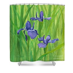 Shower Curtain featuring the painting Purple Iris by Phyllis Howard
