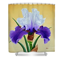 Shower Curtain featuring the painting Purple Iris With White Tops by Jimmie Bartlett