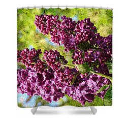 Purple Lilac 1 Shower Curtain by Jean Bernard Roussilhe