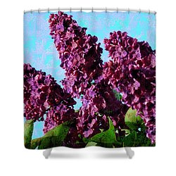 Purple Lilac 2 Shower Curtain by Jean Bernard Roussilhe