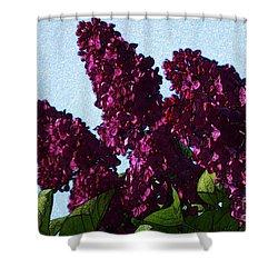 Purple Lilac 3 Shower Curtain by Jean Bernard Roussilhe