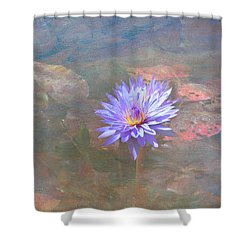 Purple Lily Shower Curtain by Carolyn Dalessandro