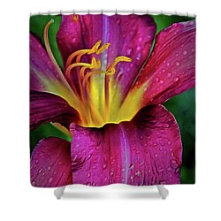 Purple Lily With Raindrops Shower Curtain by Patricia Strand