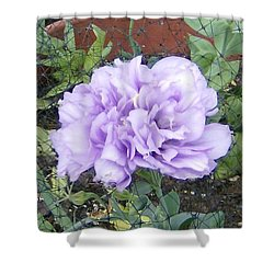 Purple Lisianthus Shower Curtain