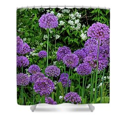 Purple Lollipops Shower Curtain by Henry Kowalski