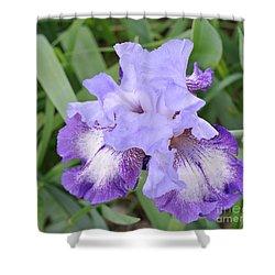 Purple Love Shower Curtain by Marsha Heiken