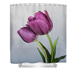 Purple Majesty Shower Curtain by David and Carol Kelly