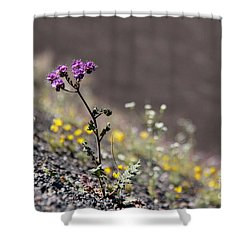Shower Curtain featuring the photograph Purple Notchleaf by Suzanne Oesterling
