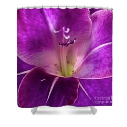 Shower Curtain featuring the photograph Purple Orchid Close Up by Kim Nelson