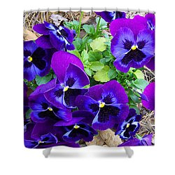 Shower Curtain featuring the photograph Purple Pansies by Sandi OReilly