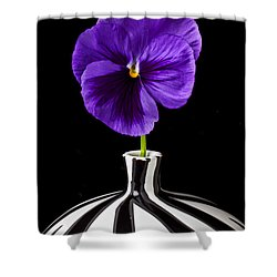 Purple Pansy Shower Curtain by Garry Gay