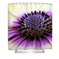 Purple Passion Shower Curtain by Deborah Scannell