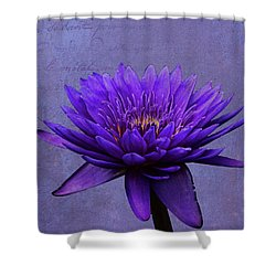 Shower Curtain featuring the photograph Purple Passion by Judy Vincent
