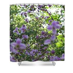 Purple Passion Shower Curtain by Michael Krek