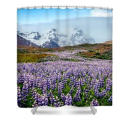 Purple Pathway Shower Curtain