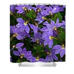 Shower Curtain featuring the photograph Purple Perspective by Shari Jardina