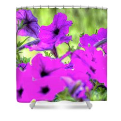 Shower Curtain featuring the photograph Purple Petunias by Jerry Sodorff