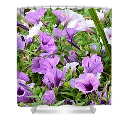 Purple Petunias Shower Curtain